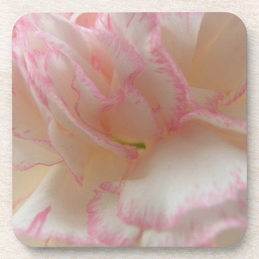 Pink and White Carnation Cork Coaster
