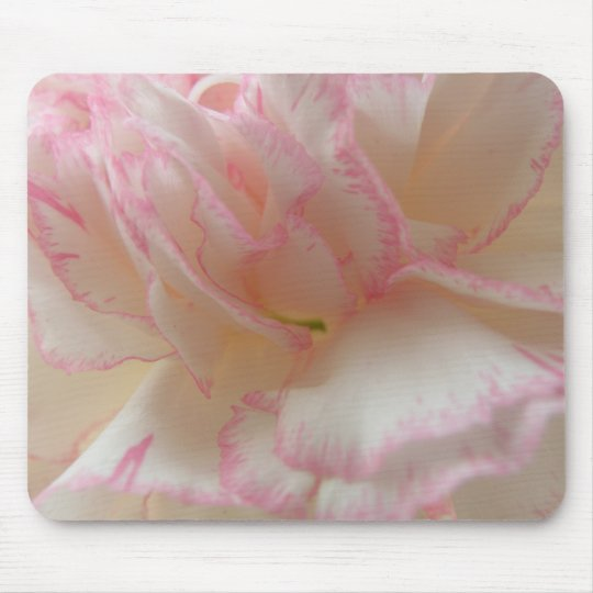 Pink and White Carnation Mousepad