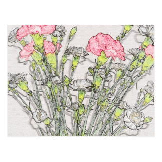 Pink and White Carnations Postcard