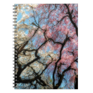 pink and white cherry trees spiral note books