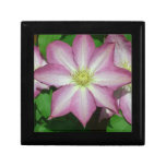 Pink and White Clematis Spring Flower Keepsake Box