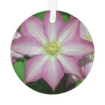 Pink and White Clematis Spring Flower Ornament