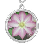 Pink and White Clematis Spring Flower Silver Plated Necklace