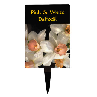 Pink and White Daffodil Garden Marker Cake Topper