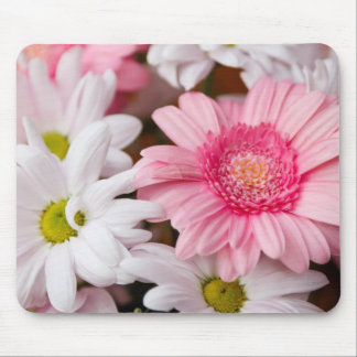 Pink and White Daisies Mousepads