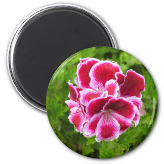 pink and white flower 2 inch round magnet