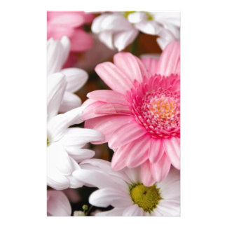 Pink and White Gerbera Daisies Stationery Design