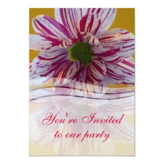 Pink and White Gerbera Flower Card
