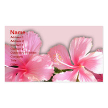 Pink and White Hawaiian Hibiscus Business Card