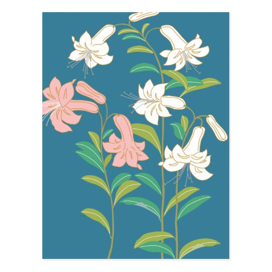 Pink and white lilies on a blue background postcard