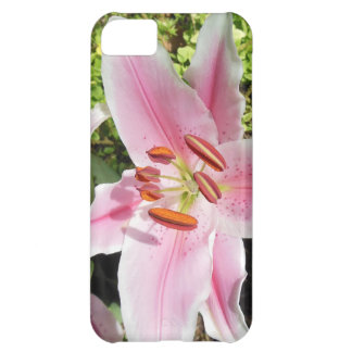 Pink and White Lily Flower Cover For iPhone 5C