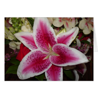 pink and white lily flower greeting card