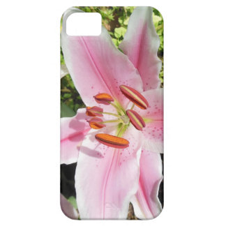 Pink and White Lily Flower iPhone SE/5/5s Case