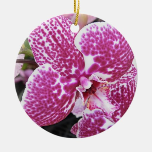 Pink and White Orchid Ceramic Ornament