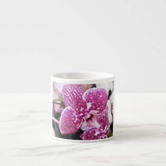 Pink and White Orchid Espresso Cup