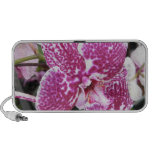 Pink and White Orchid Speaker