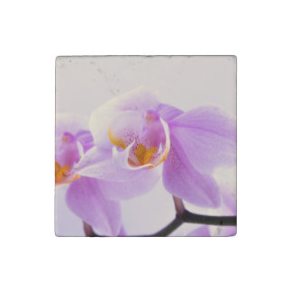 Pink and White Orchids Stone Magnet