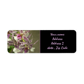 Pink and White Orchids Label