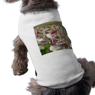 Pink and White Orchids Pet T-shirt