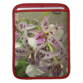 Pink and White Orchids Sleeves For iPads