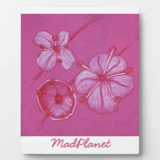 Pink and White Painted Flower Study Plaque