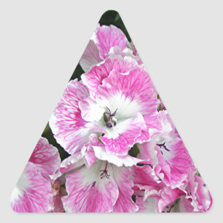 Pink and white pelargonium flowers triangle sticker