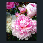 "Pink and White Peonies Letterhead<br><div class=""desc"">Pink and White Peonies</div>"