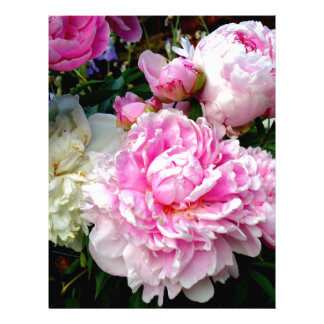 Pink and White Peonies Letterhead