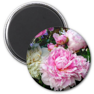 Pink and White Peonies Magnet