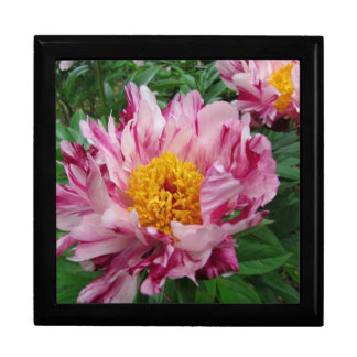 Pink and white peony giftbox gift boxes