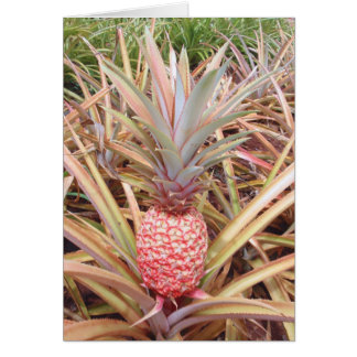 Pink and White Pineapple Card