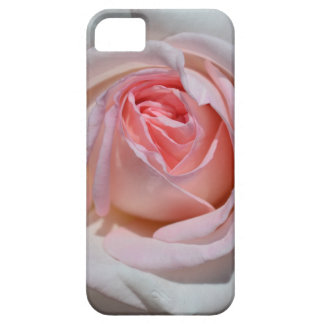 Pink and White Rose iPhone 5 Case