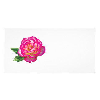 Pink and White Rose Photo Card