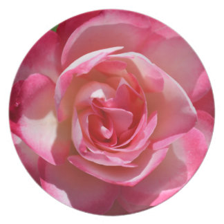 Pink and White Rose Plate