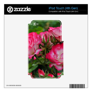 Pink and white roses iPod touch 4G skins