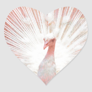 Pink and White Soft Focus Lights Peacock Heart Sticker