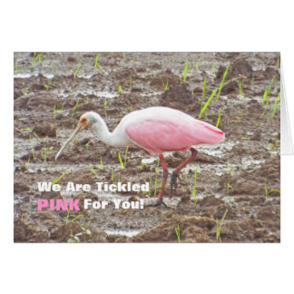 PINK AND WHITE SPOONBILL BIRD (PHOTOGRAPHY) CARD