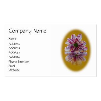 Pink and White Striped Daisy Gerbera Double-Sided Standard Business Cards (Pack Of 100)