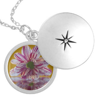 Pink and White Striped Daisy Gerbera Round Locket Necklace