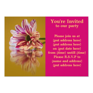 Pink and White Stripey Gerbera Flower Card