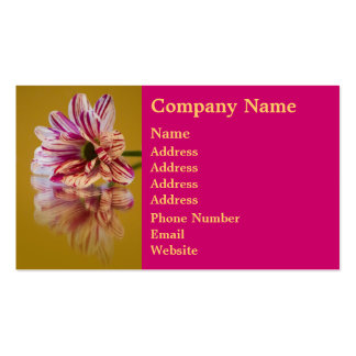Pink and White Stripey Gerbera Flower Double-Sided Standard Business Cards (Pack Of 100)