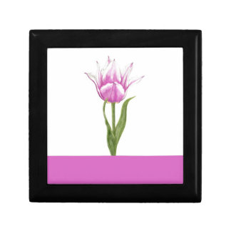 Pink and White Tulip Gift Box - Pink Stripe