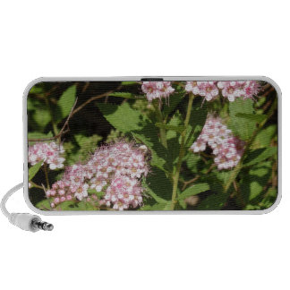Pink and Whote Garden Flower Travelling Speakers