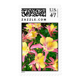 Pink and Yellow Columbines Postage Stamp