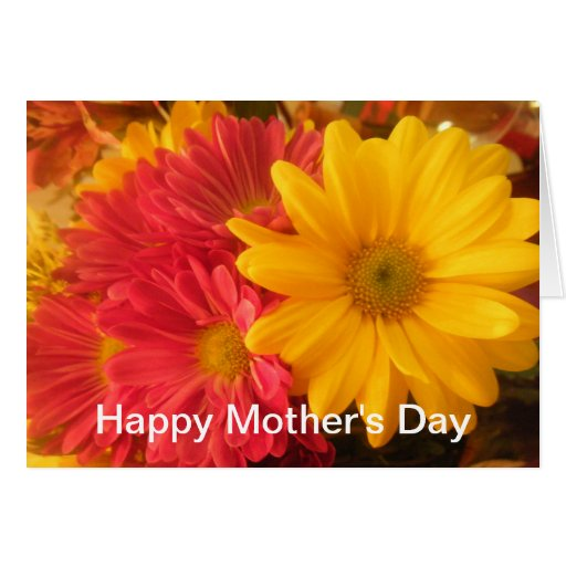 Pink and Yellow Daisies Happy Mother's Day Cards