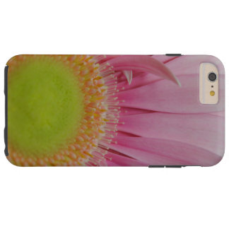 Pink and Yellow Daisy iPhone 6 Plus Case