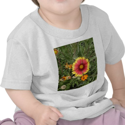 Pink And Yellow Daisy T Shirt