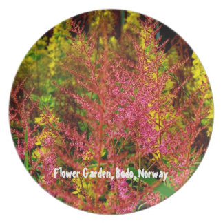 Pink and Yellow Flower Garden Plate