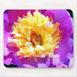 Pink and Yellow Flower photo Mouse Pad