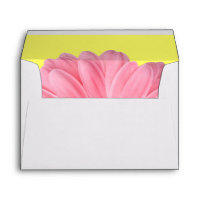 Pink and Yellow Gerber Daisy Envelopes